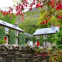 delphi_boathouse_cottages_1445